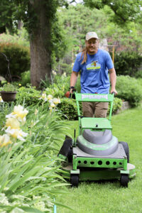 electric lawn mower st. louis