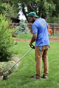 all electric lawn care equipment st louis